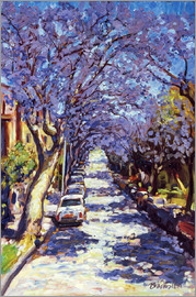 Ted Blackall - Jacaranda im Norden Sydneys