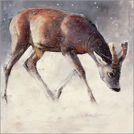 Mark Adlington - Junger Hirsch im Winter
