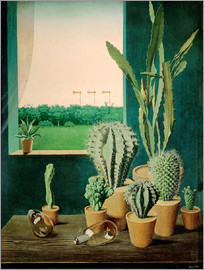Georg Scholz - Cacti and semaphores
