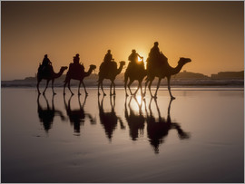 Charles Bowman - Camel walk on the beach