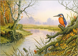 Carl Donner - Kingfisher: Autumn River Scene