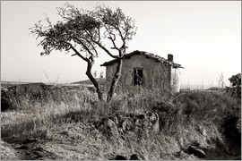 CAPTAIN SILVA - Rural idyll on the island of Sardinia