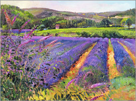 Timothy Easton - Lavendelfeld