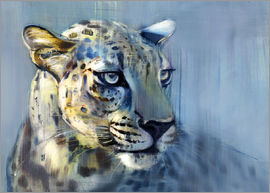 Mark Adlington - Leopard, Profil