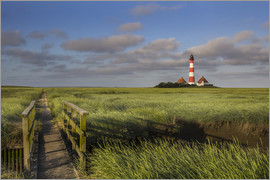 Lighthouse in the salt marshes on the North Coast