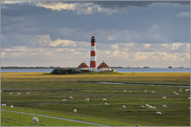 Rainer Mirau - Lighthouse Westerhever, cumulus clouds, salt meadow, watts, sheep