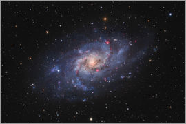 Lorand Fenyes - Messier 33, the Triangulum Galaxy.