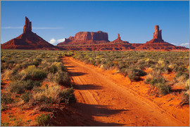 David Wall - Monument Valley