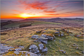Julian Elliott - Morgen im Dartmoor Nationalpark