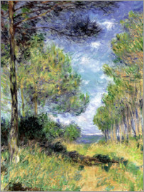 Claude Monet - Nadelbäume in Varengeville