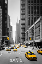 Michael Haußmann - New York Yellow Cabs