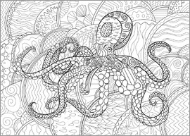 ausmalposter Zentangle Oktopus