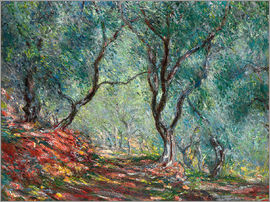 Claude Monet - Olive Trees in the Moreno Garden