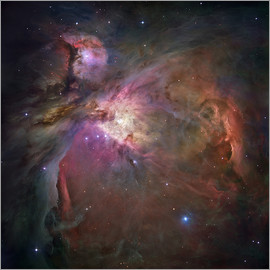 Nasa - Orion nebula (M42 and M43)