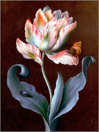 Barbara Regina Dietzsch - Parrot Tulip with Butterfly and Beetle