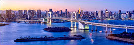 Jan Christopher Becke - Rainbow bridge in Tokyo