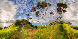 Michael Rucker - Russell - Neuseeland - Bay of Island