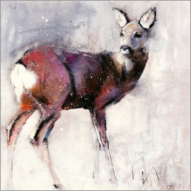 Mark Adlington - Shy deer in the snow