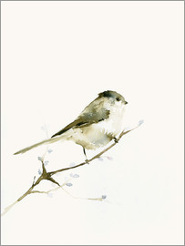 Dearpumpernickel - Long-tailed tit