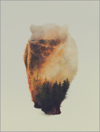 Andreas Lie - Approaching bear