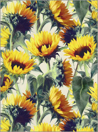 Micklyn Le Feuvre - Sunflowers forever