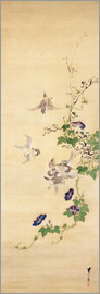 Seshiko - Sparrows and morning glory