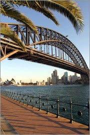 David Wall - Sydney Harbour Bridge