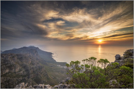 Salvadori Chiara - Table Mountain