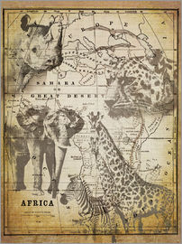 Andrea Haase - The Spirit of Africa