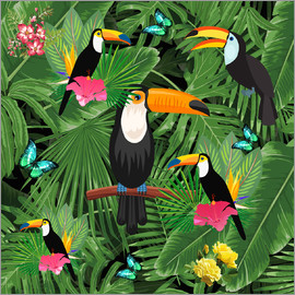Mark Ashkenazi - Toucan