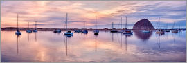 Ann Collins - USA, California, Panoramic view of sailboats moored in Morro Bay at sunset
