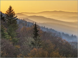 Ann Collins - USA, North Carolina, Great Smoky Mountains National Park, Sunrise from the Oconaluftee Valley overlo