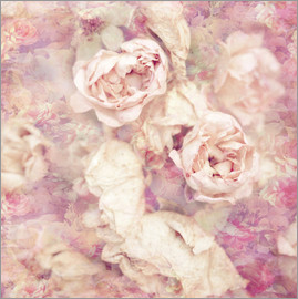 INA FineArt - Faded roses