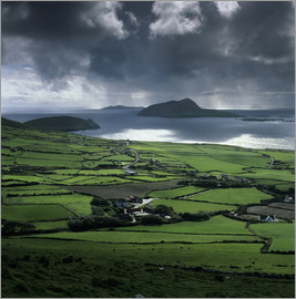 Stuart Black - View over Blasket Sound to the Blasket Islands and Slea Head, The Dingle Peninsula, County Kerry, Mu