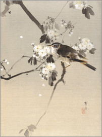Watanabe Seitei - Bird on a Flowering Branch