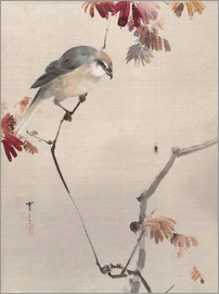 Watanabe Seitei - Bird on Branch Watching Spider