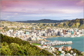 Matteo Colombo - Wellington am Morgen, Neuseeland