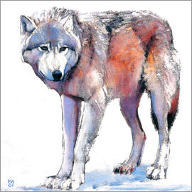 Mark Adlington - Wolf