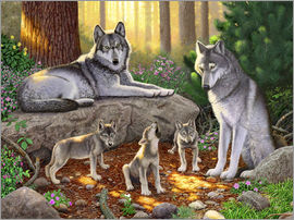 Chris Hiett - A family of wolves