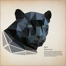 Wandsticker fig6 Polygonpanther Quadrat