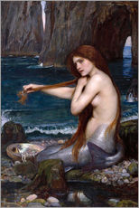 Gallery Print  Die Meerjungfrau - John William Waterhouse