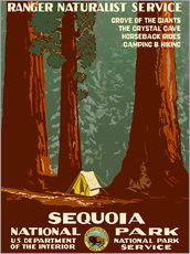 Wandsticker  Sequoia National Park - Travel Collection