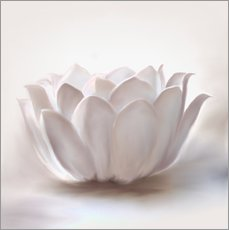 Wandsticker  White Lotus - Christine Ganz