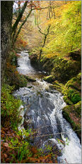 Gallery Print  Lynmouth-Fluss mit Wald - Keith Wheeler