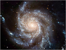 Gallery Print  Spiralgalaxie M101 - NASA