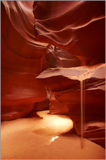 Gallery Print  Oberer Antelope Canyon - David Wall
