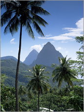 Gallery Print  Die Pitons, St. Lucia - John Miller
