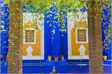 Gallery Print  Fenster in den Majorelle Gardens - Matthew Williams-Ellis