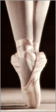 Gallery Print  Ballett Schuhe - Don Hammond
