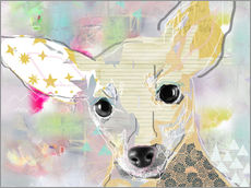 Wandsticker  Chihuahua Collage - GreenNest